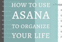 Organizing | Project Management