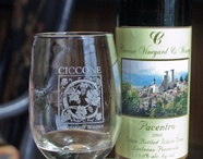 Ciccone Vineyard & Winery / Photos of daily activities, events, wines and much more!
