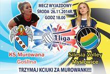 Plakat vs Silesia Volley Mysłowice 1 Runda / Plakat vs Silesia Volley Mysłowice 1 Runda