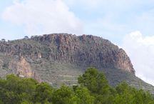 Patrimonio natural / Patrimonio natural de la Comarca Campos de Hellín