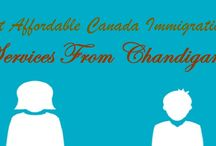 Canada Immigration From Chandigarh