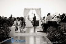 Weddings / Casa Dorada provides a perfect setting for your special day! / by Casa Dorada Resort - Cabo San Lucas