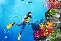 fish reef coral 4