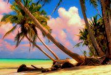 Nicaragua | República de Nicaragua | 尼加拉瓜 / 尼加拉瓜共和国(西班牙文:República de Nicaragua),簡稱尼加拉瓜,是位於中美洲的一個國家,為中美地峡面積最大的國家,北鄰洪都拉斯,南邊是哥斯達黎加,東臨加勒比海,西面太平洋。尼加拉瓜國土可分為三個主要地理區,分別為太平洋低地區、較為濕涼的中部高地區以及加勒比海低地區。尼加拉瓜近太平洋地區有中美洲最大的2個淡水湖-馬那瓜湖及尼加拉瓜湖。尼加拉瓜首都是马那瓜。溫暖的熱帶氣候、生物多樣性及活火山等為尼加拉瓜主要的旅遊景點[6][7]。 / by Anthony Cheong