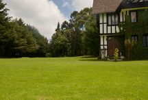 Nuestros lugares románticos / El espacio mágico en torno a una cita romántica, el ambiente de amor que se crea alrededor.  www.volopapilio.com.mx