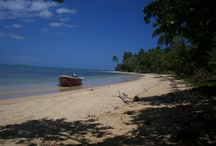 Tonga / Holidays