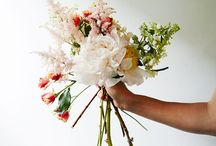 Botanical Dreams / Any and all gorgeous photos of flowers and stems.