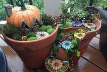 Jardim e idéias para vasos