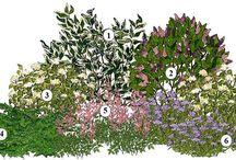 kvetinova zahrada /Projekty na vyskúšanie