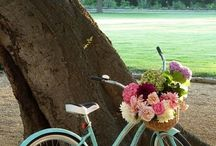 Bicycles, flowers and happiness