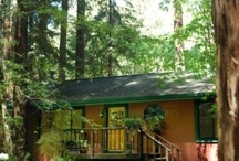Caz Cabins / by Mrs. Coffee