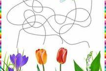 Jarné kvety