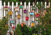 For the Birds.... / For our feather friends...houses, baths, feeders...... / by Cassie Koegl