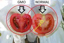 GMO's: SAY NO!! EAT ORGANIC
