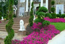 AllinLandScaping / #AllinLandScaping Our landscape services are as diverse as the desires and interests of our customers. / by George Ogden