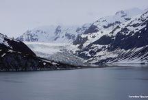 Alaska Cruise/RV Camping at Denali / by Leslie Buffington