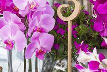 ARTFLOWER: ORCHIDS GALLORE WEDDING
