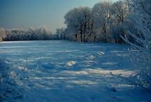 Snow Time 2012 / (my foto) / by Tiziana Bergantin