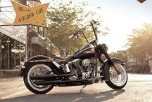 Harley Davidson / by Danielle Rainer