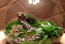 Moss Decoratives