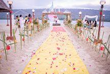 Wedding / Anything about wedding