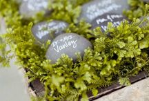 Table numbers or escort table ideas