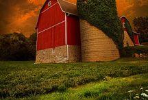 Barns and Farmyard Buildings / by Candy Rick
