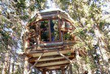 Casa del árbol / by María Mercedes Pando