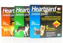 Heartworm Prevention / All Kinds of Medications to Protect Against Heartworm Disease