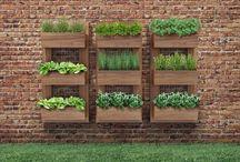 Grădina de verdețuri