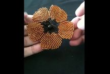 videos de flores
