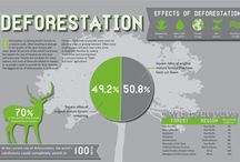 Nature Infographic / With some of the best details here know about Nature and its side effects if we still don't stop deforestation or other activities which may cause a lot to the humanity along with other species. Just because of us....