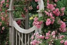 Formal Gardening