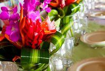 Katrin & Richard's Costa Rica Wedding