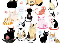 koty / cats !