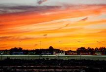 Sunsets at AMS