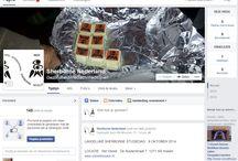 Facebook pagina's / Voorbeelden van door ons gemaakte Facebook pagina's.