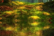 L'Art des reflets