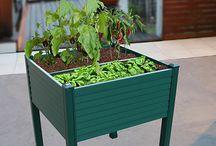 Cultiva tu huerto / ¿Quieres cultivar tus propias verduras y hortalizas en casa? Aquí te mostramos todas las ideas para comenzar con ello. #leroymerlin #huerto #huertourbano #jardín