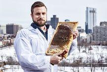 Bees & Hives & Honey