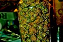 Smoke weed Erryday!