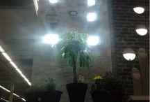 Apresentação colecção prjectores exteriores e jardim / Decoração e visual merchandising da nova colecção de projectores exteriores e jardim. Leroy Merlin