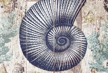 Paleontologia y fosiles