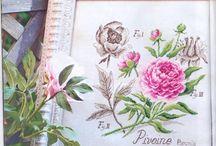 De fil en aiguille étude des fleurs