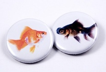 goldfishies / by MacKenzie