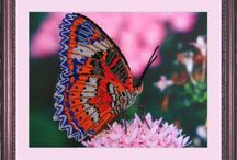 Butterfly Bead Embroidery Kits