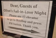 Olive's Fall-in-Love Night Party / 2013.10.18 광화문 써머셋 팰리스 호텔, MSP파티