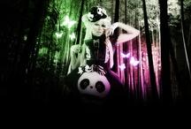 pandas rule the world
