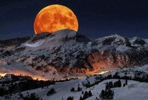 Moonstruck! / The Many Moods of the Moon / by Cynthia Alford