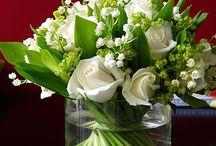 Flowers / Centerpieces